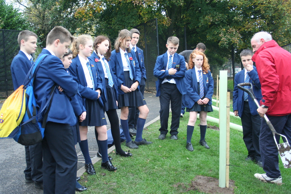 Tree planting Year 8 tutor reps 007.JPG