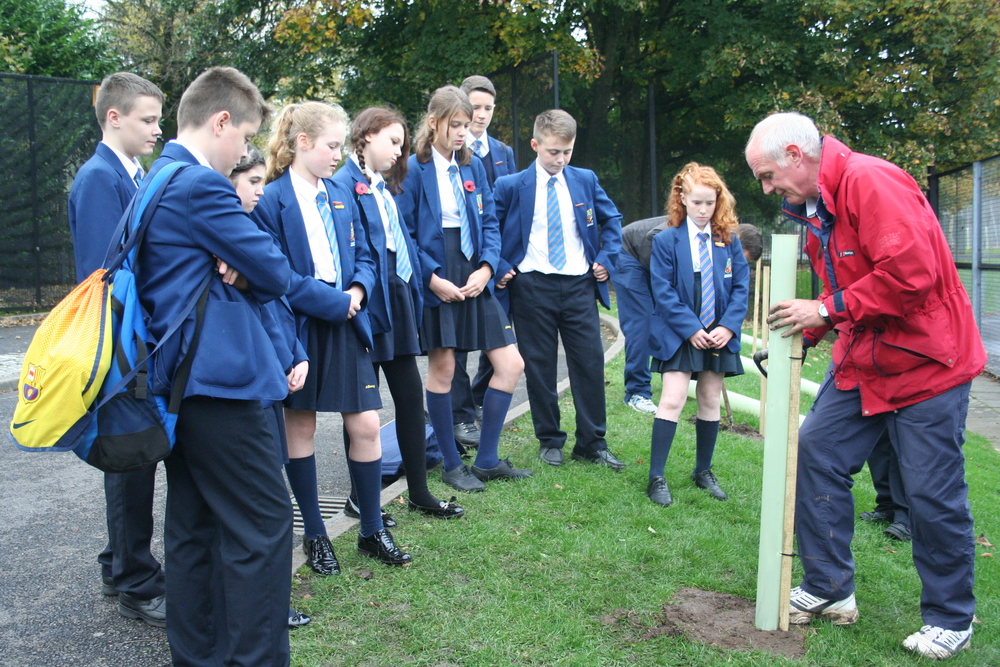 Tree planting Year 8 tutor reps 008.JPG