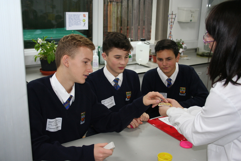Year 10 students enjoying the workshop