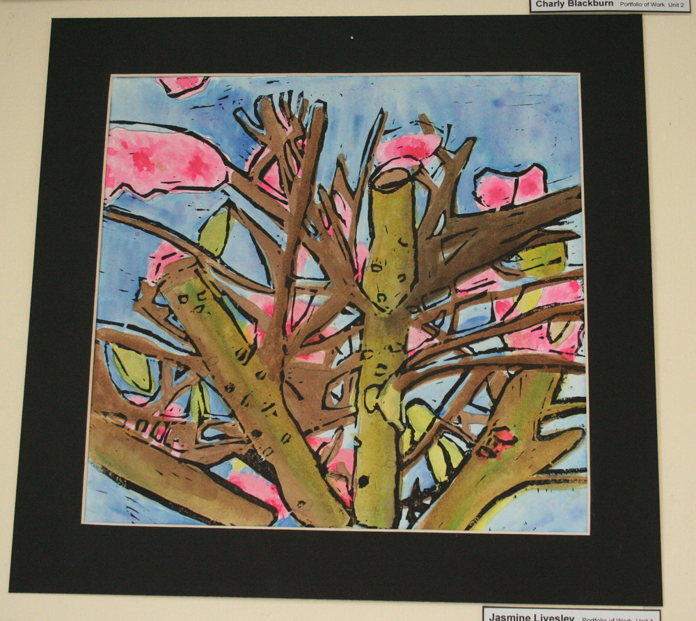 GCSE Art Exhibition 2015 011.JPG