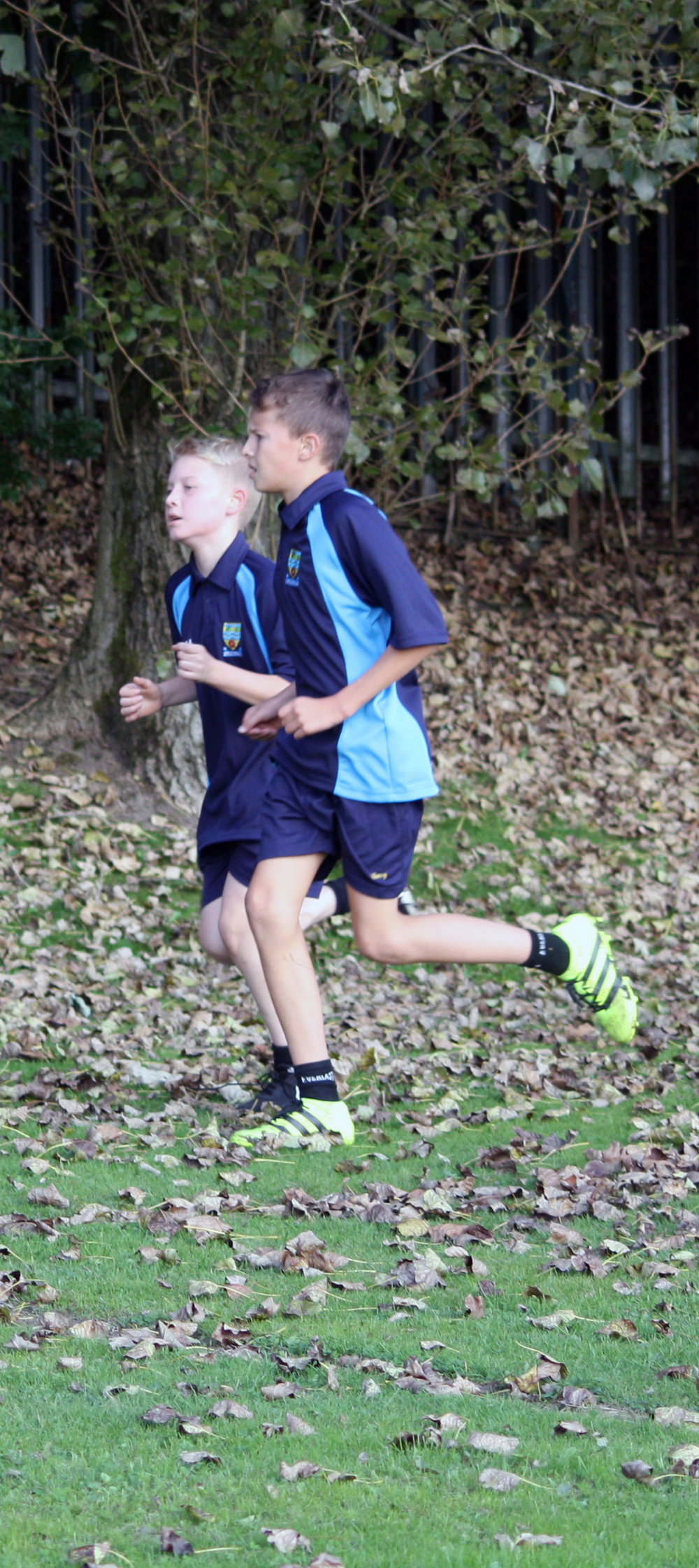 Cross country 2016 5.jpg