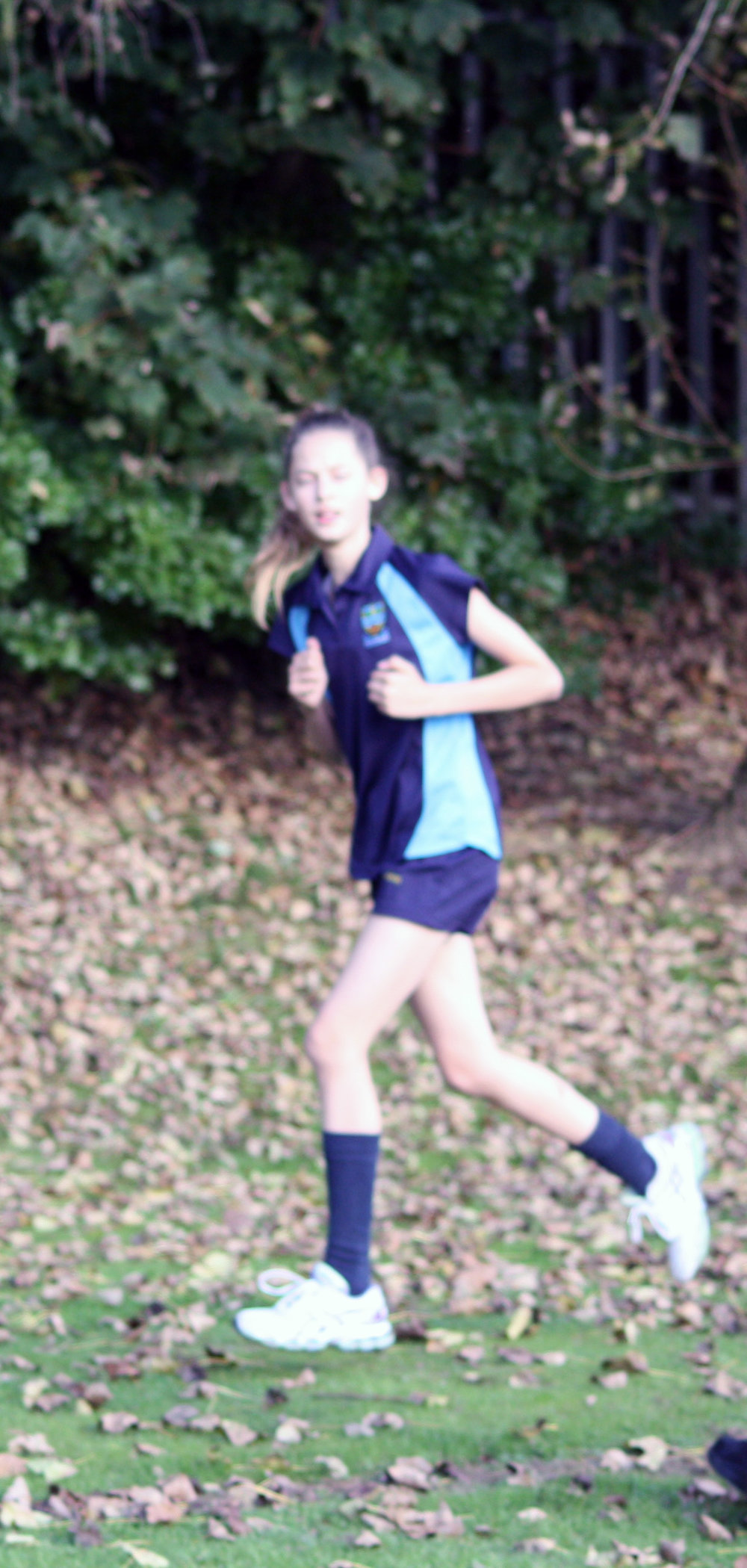 Cross country 2016 7.jpg