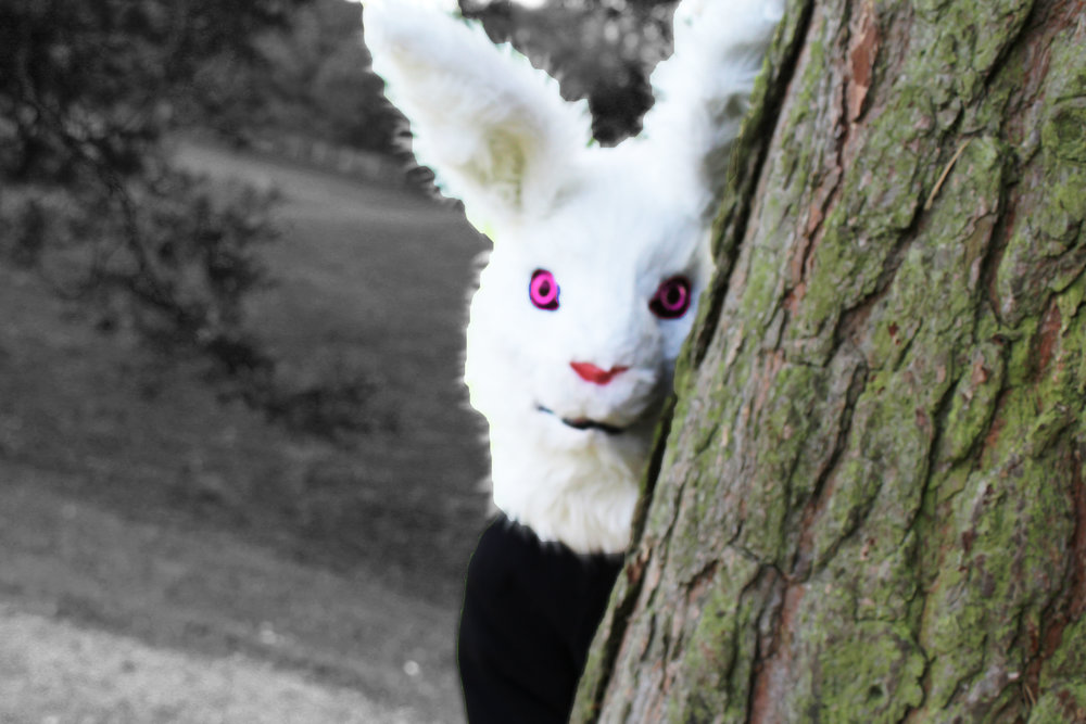 rabbit behind tree complete.jpg
