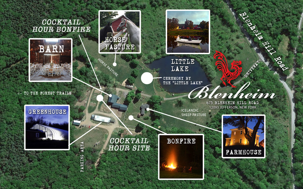 Map of the Blenheim grounds