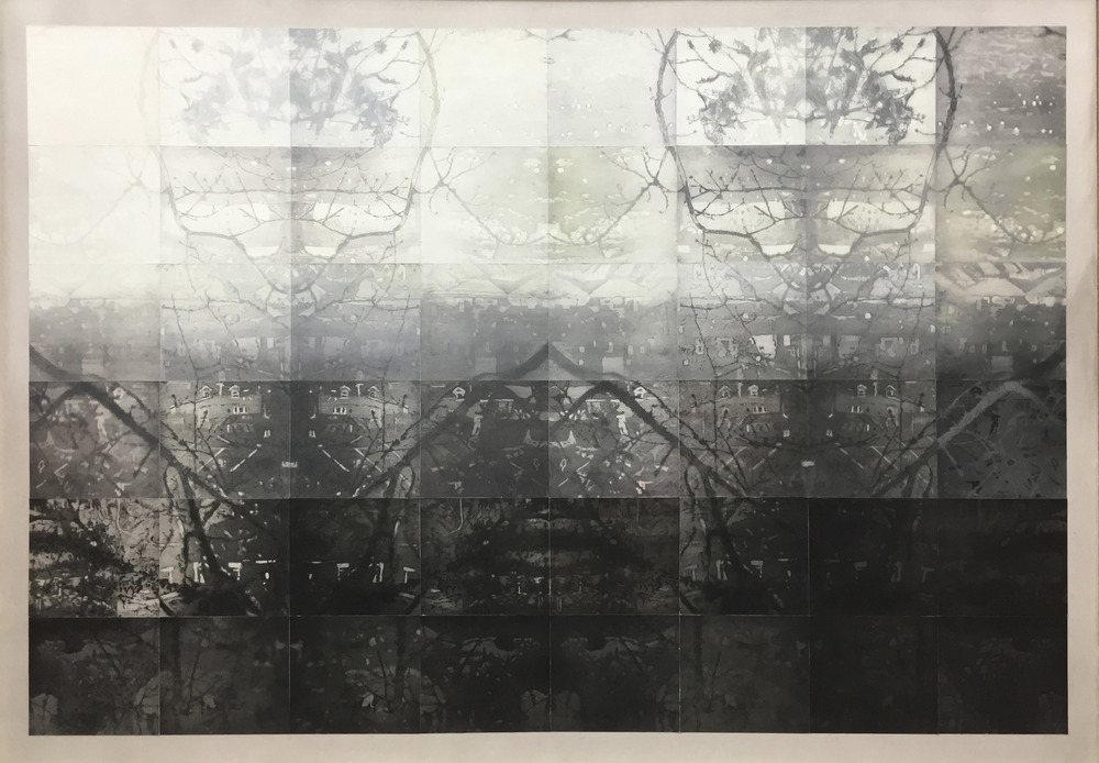 IDENTICAL TWINS,  2013, 48 copper plate etchings printed onto watercolour and graphite on 400gsm Velin Arches, 168 x 121cm