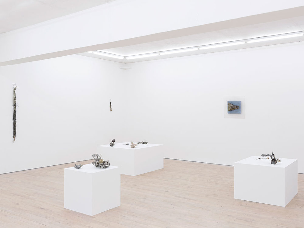 3.-Gillian-Lowndes-installation-view - Copy.jpg