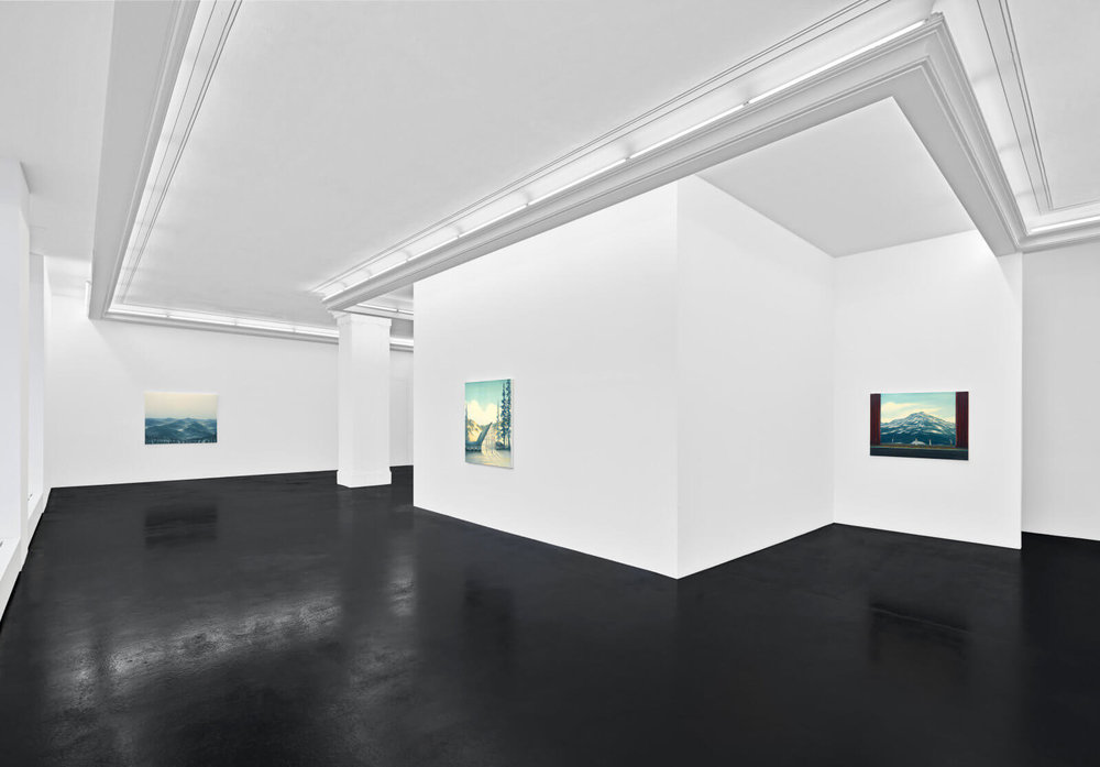 DA-Natural-Selections-Installation-View-2-HIRES-1600x1115.jpg