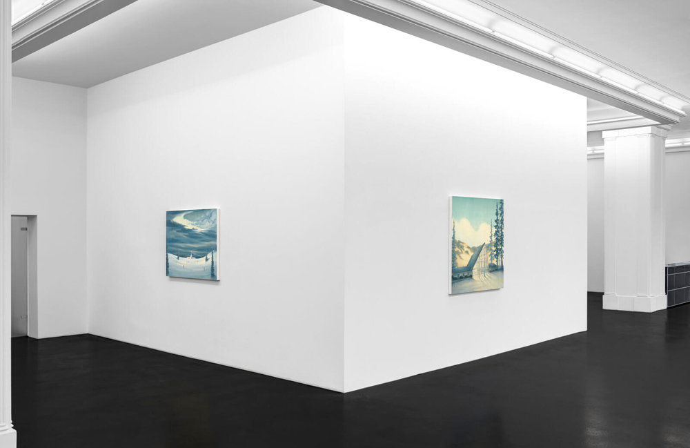 DA-Natural-Selections-Installation-View-4-HIRES-1600x1039.jpg
