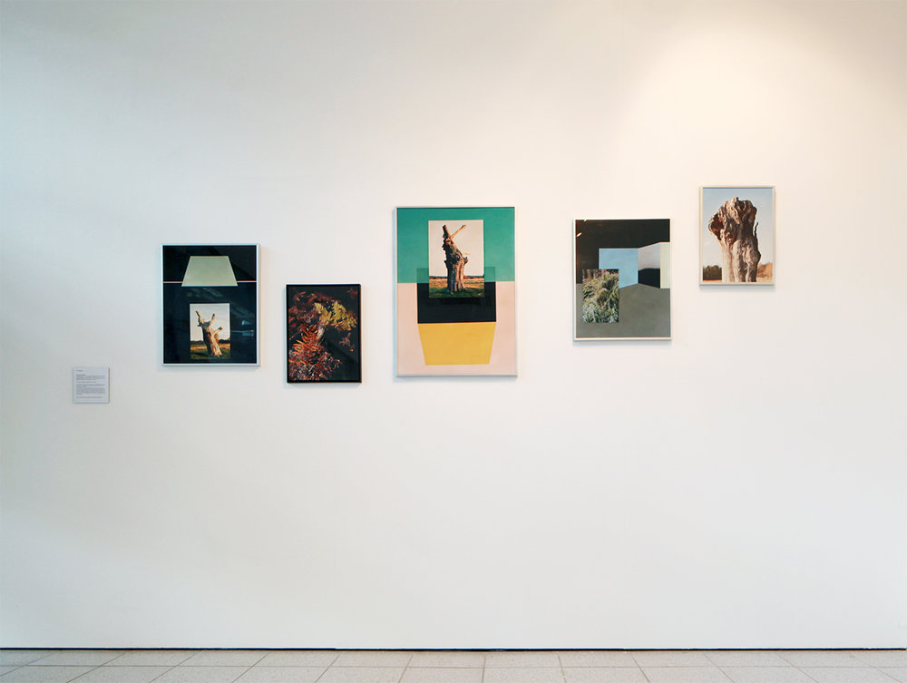 Co-existence - installation view