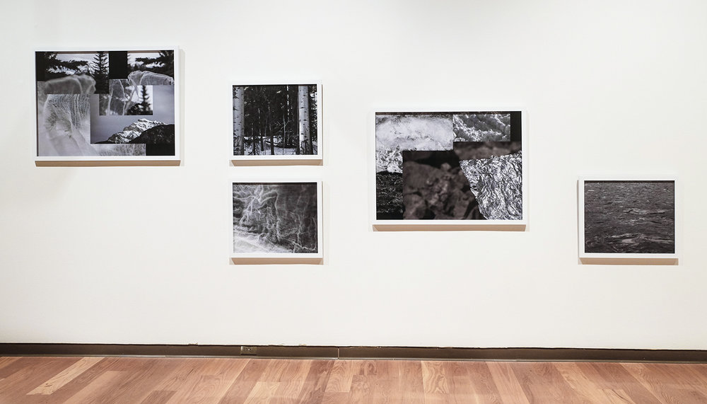 'Mountainfield Studies' The Florida Prize in Contemporary Art, 2016, Orlando Museum of Art. Photo credit:   Tiffany Raulerson