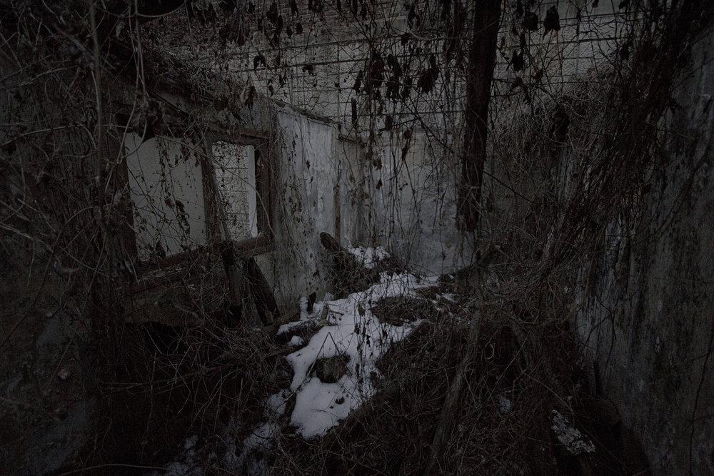 242, Seongbok 2-ro, Dead Place Project 2013