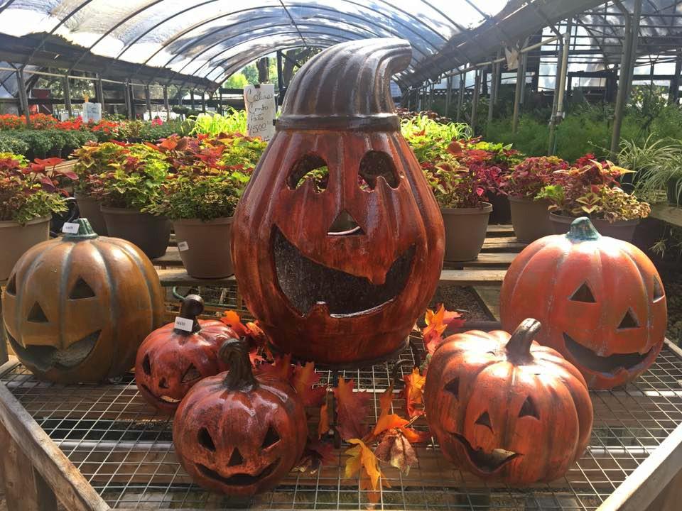 Pumpkin Crew.jpg