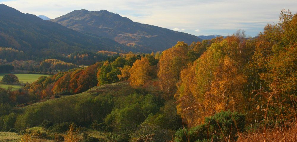 Scotland in autumn - west of Comrie, Perthshire. Picture dated November 2 that year.  Hmm, probably around peak time - but so hard to generalise.
