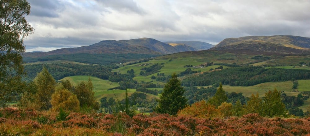 View north to Glen Turret from top of Knock Hill, Crieff.