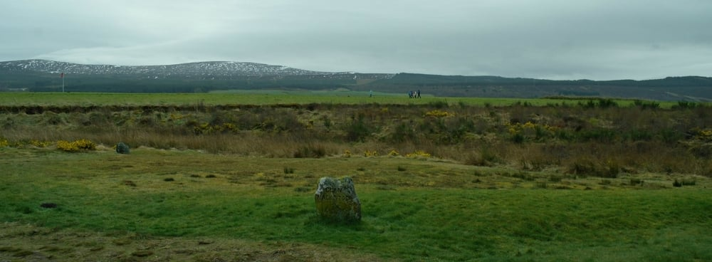 Culloden Moor, looking south.
