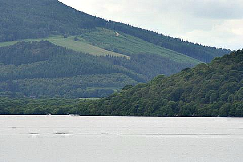 Boat wakes again, or is it the Loch Ness Monster cruising below the surface? Don't be daft!