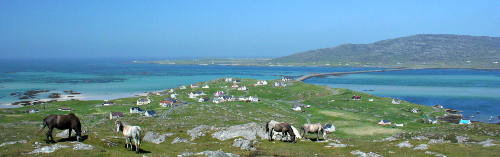 Eriskay ponies - causeway to South Uist in the distance