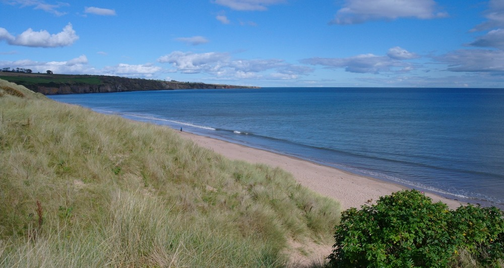 Lunan Bay, Angus - another classic east-coast beach.