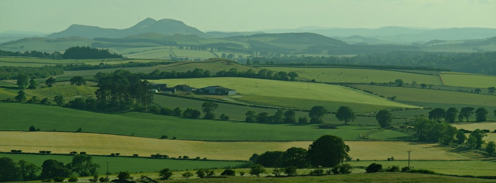 The Eildon Hills from Hume Tower, Scottish Borders. (Green, isn't it, round here?)
