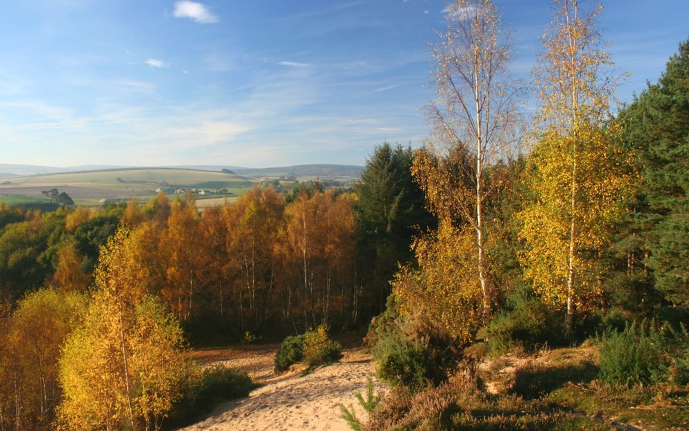 Autumn in Moray