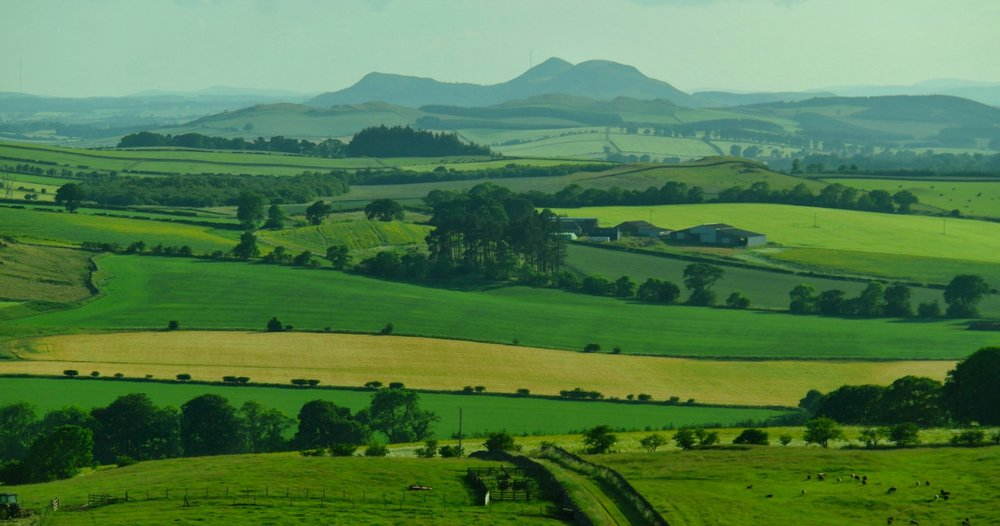 Eildon Hills - July