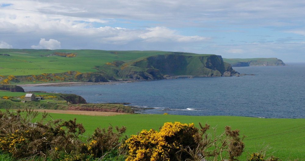 Perhaps the Bonaventure came ashore further west still. The coastline becomes increasingly rugged here, towards Pennan and Troup Head. The former site of the ancient Castle of Dundarg (from Gaelic 'red fort') is the nearer reddish headland above and left of the yellow flowering gorse.