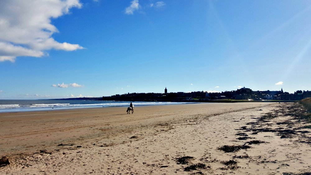 "St Andrews West Sands Beach - where you can have your ""Chariots of Fife"" moment."