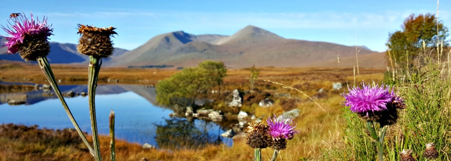 must see scotland