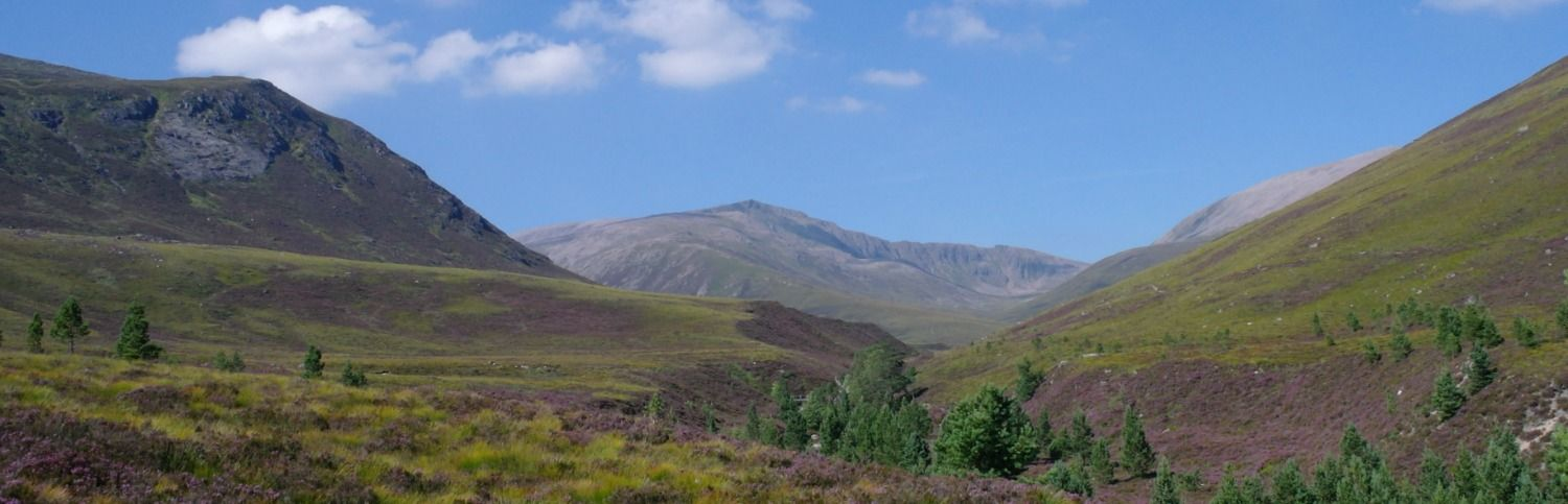 are the highlands of scotland just the cult of the picturesque