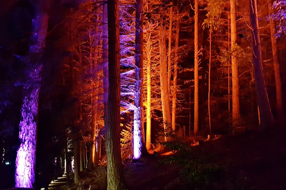No, not an alien encounter in the woods. It's the Enchanted Forest at Pitlochry.