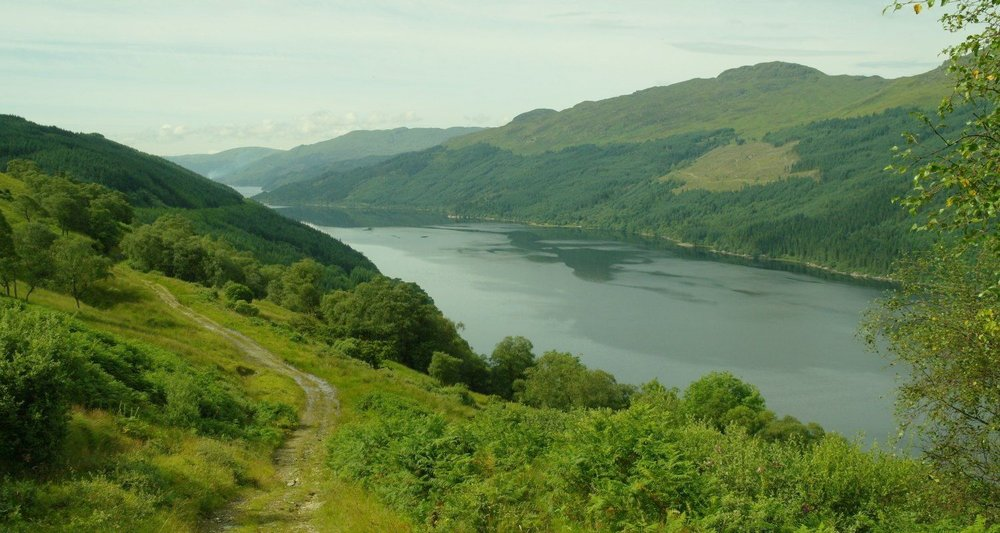 Loch Long from the Three Lochs Way, looking down the loch and away from the Highlands.