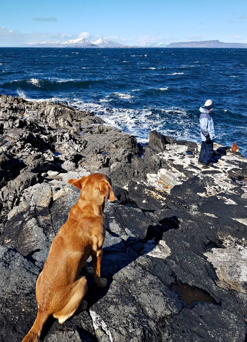 It's windy but bright - certainly windy enough to raise a Labrador's ears from their usual position. Peaks of Rum left of centre. Credit: Magnus Lugs Photography Inc.