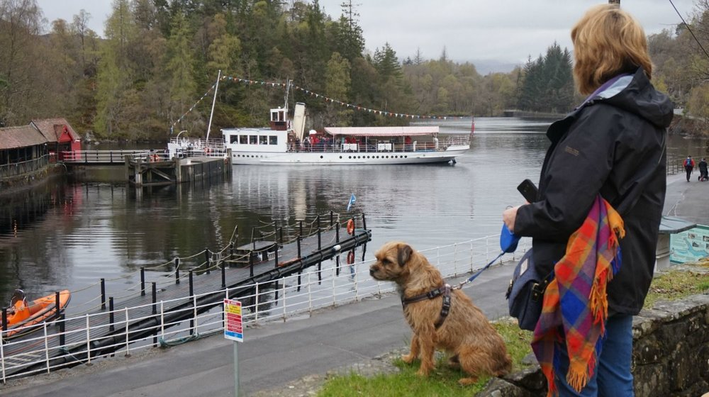 The SS Sir Walter Scott sorting itself out before heading up the loch between the islands. Trossachs Pier left, Loch Katrine road disappearing off to the right and re-appearing distantly...it goes on for miles and miles! Robbie the Border Terrier probably staring at another dog in the car-park, out of picture left. View is from the outdoor terrace of the Steamship Cafe. Loch Katrine Lodges just round the corner, right.