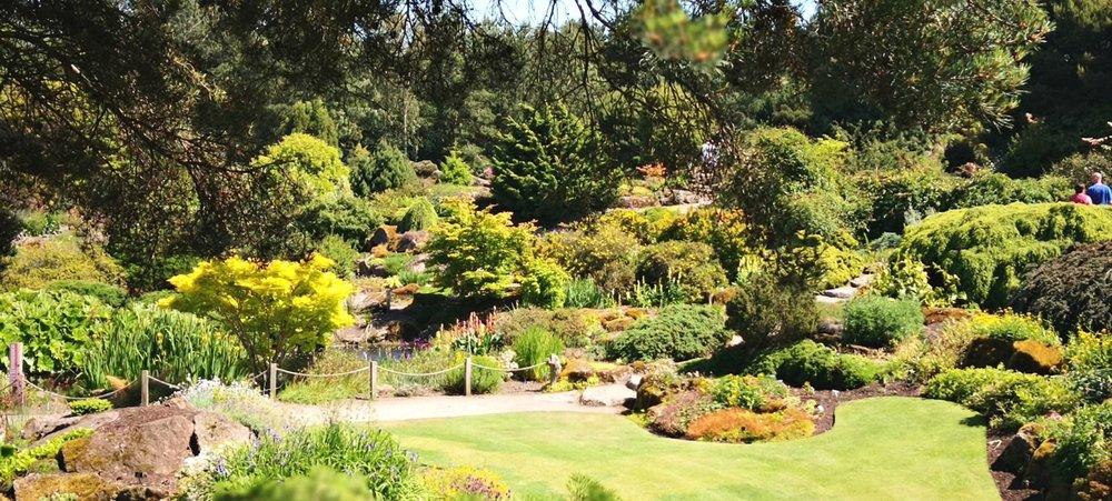 A sunny June day in Edinburgh's Royal Botanic Gardens.