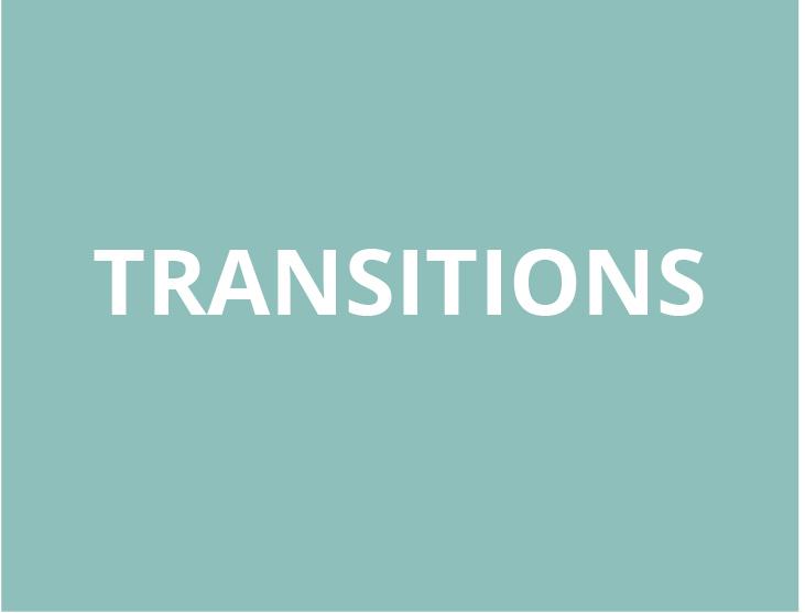 SA_Dev_Transitions.jpg