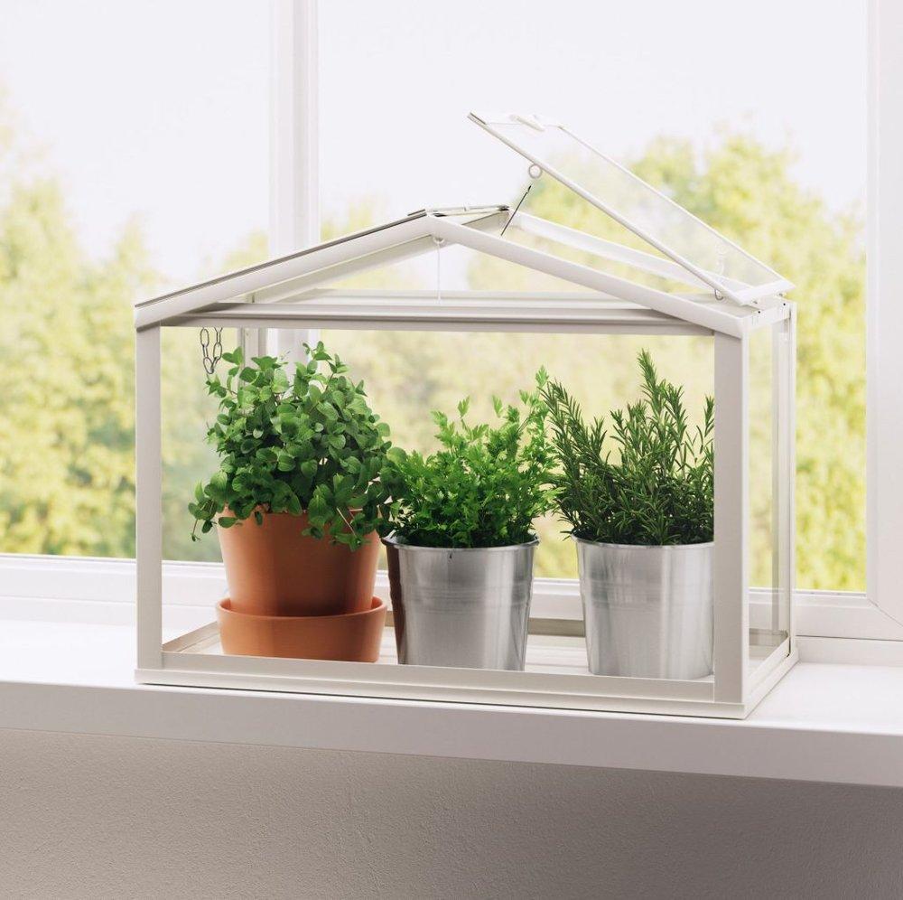 1494365008-ikea-socker-greenhouse-indoor-windowsill-herb-garden-1024x1020.jpg