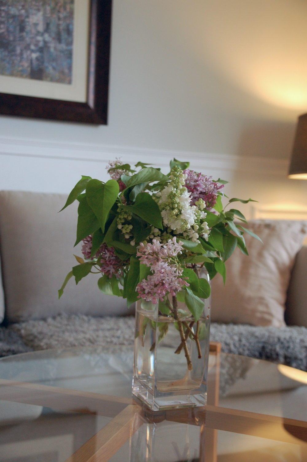 Saved some lilacs from the snow!