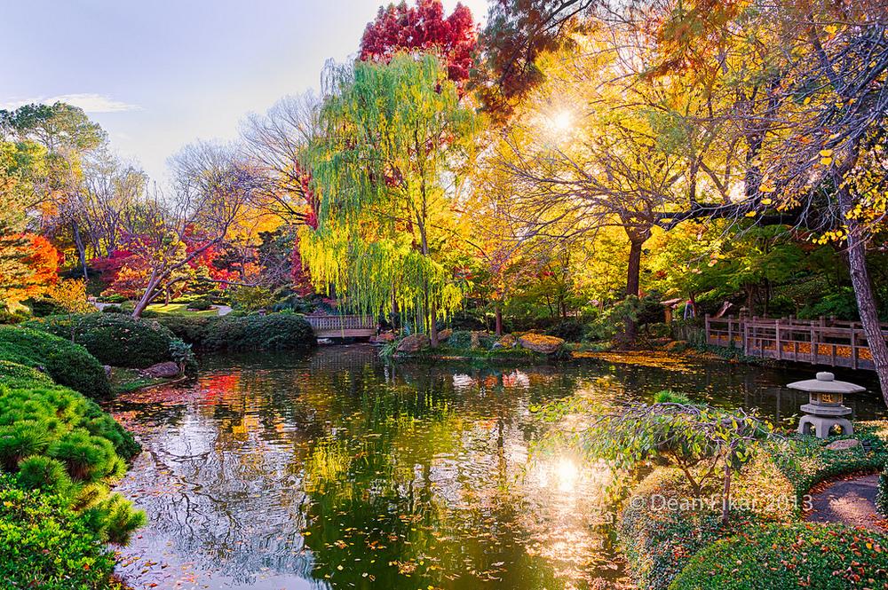 """Fall Foliage in Texas,"" Japanese Gardens, Fort Worth, TX by  dfikar via Flickr"