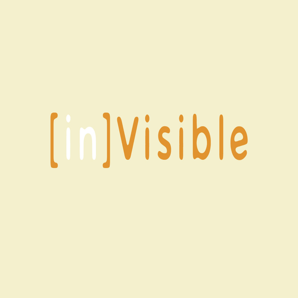 [In]Visible