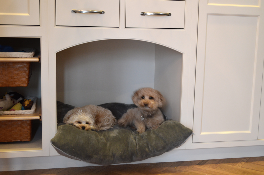 Our little furry friends resting comfortably in their new customized kitchen spot!