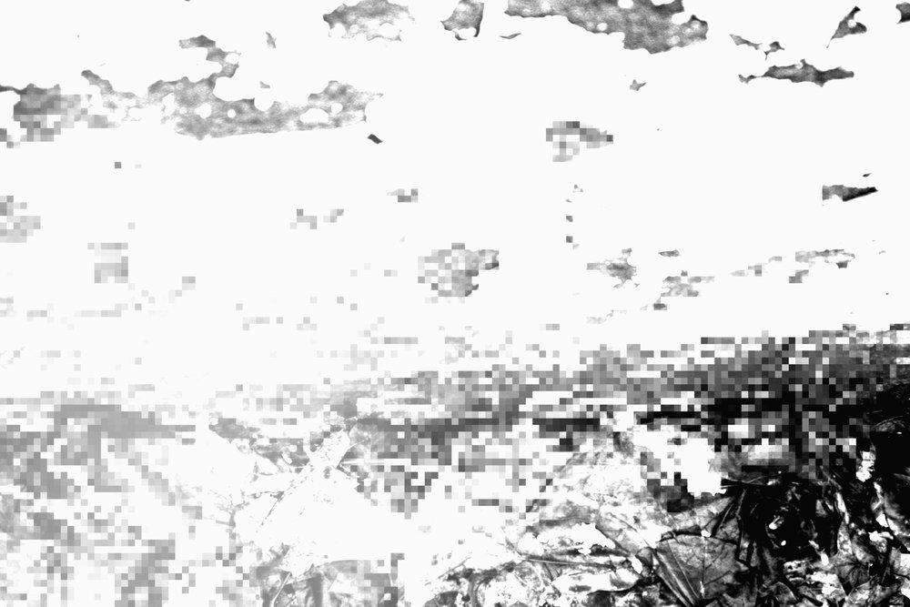 IMG_6002.jpg