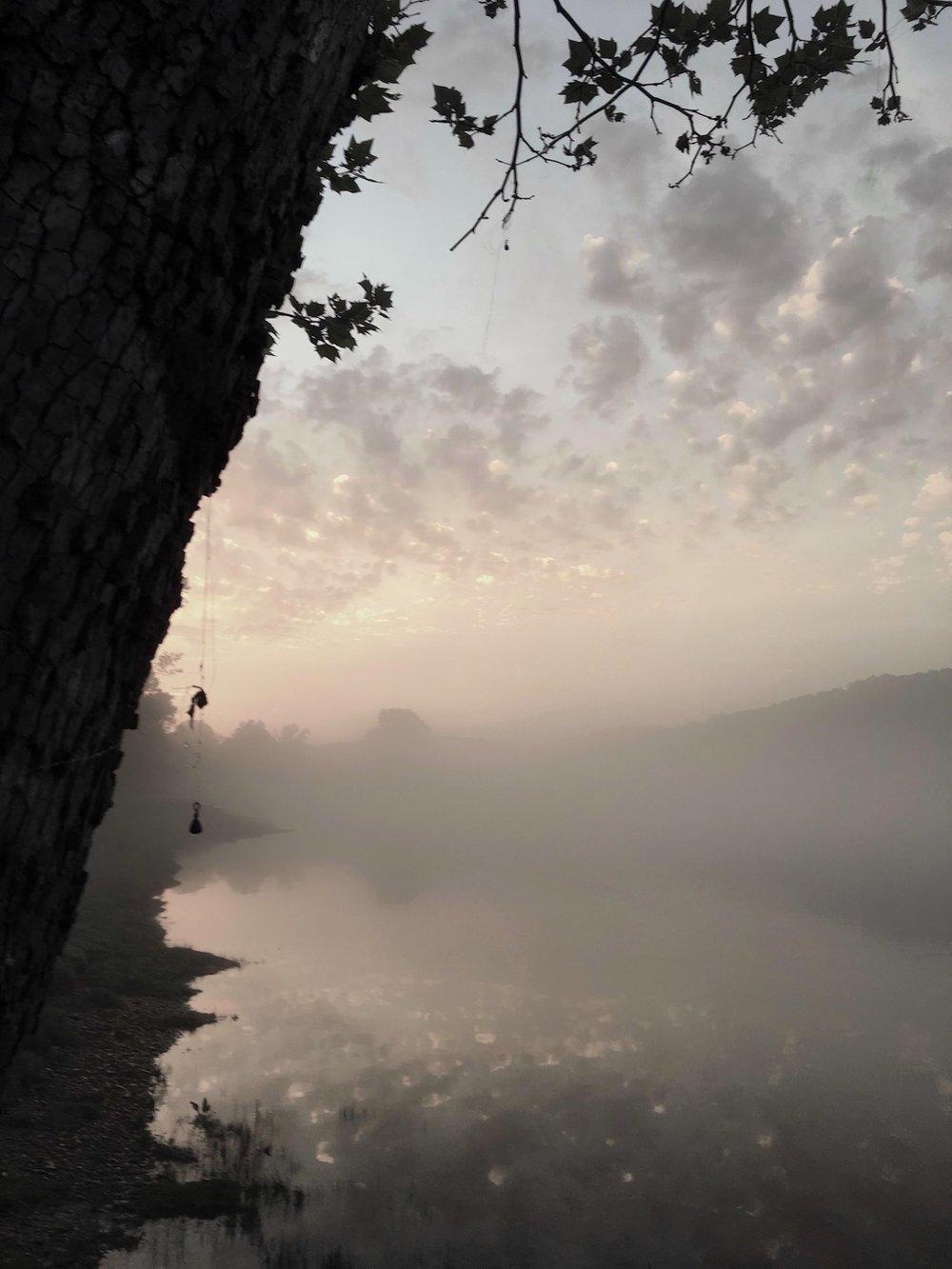 fishing_tree_at_dawn.jpg