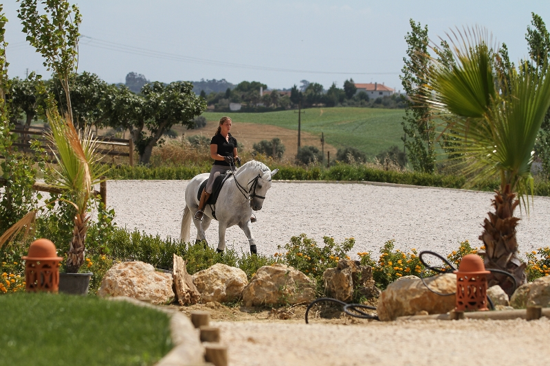 Equitation lesson