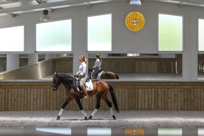 Equitação em Santarém
