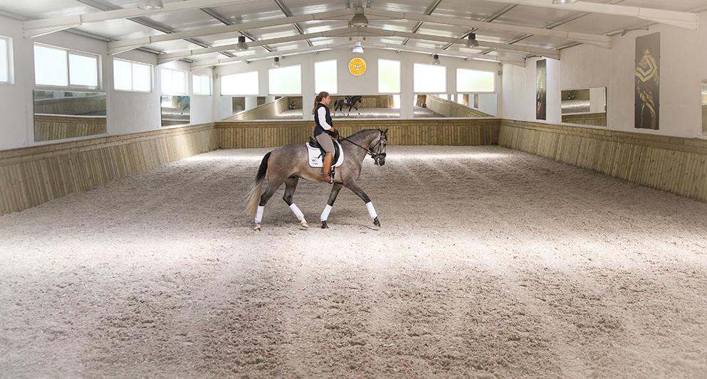 Portuguese horse fair