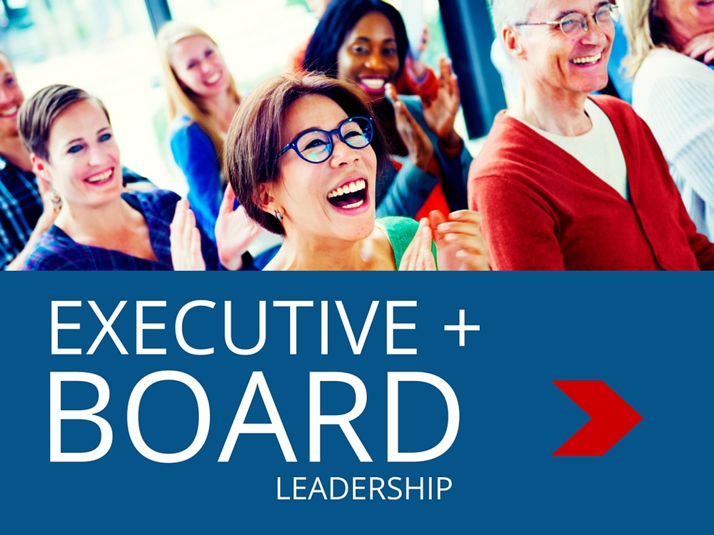 Executive and Board Boot Camps