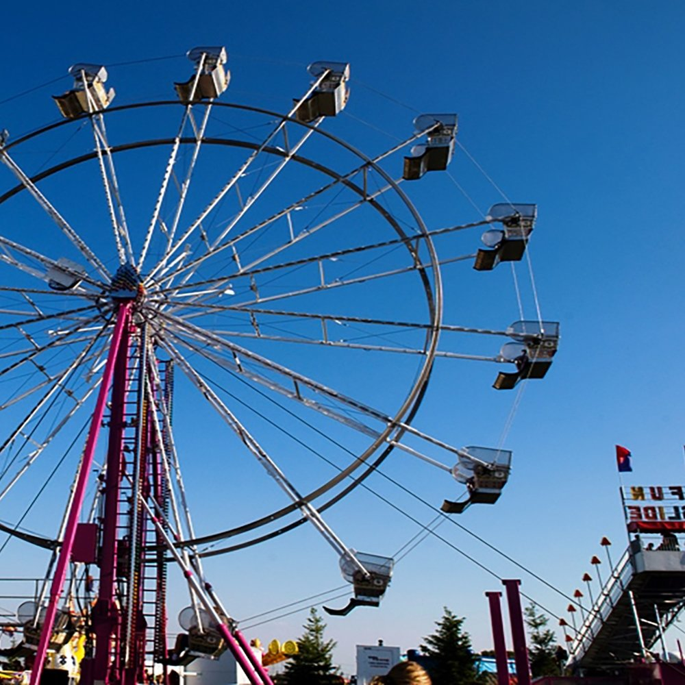 lake-county-fair-ferris-wheel.jpg