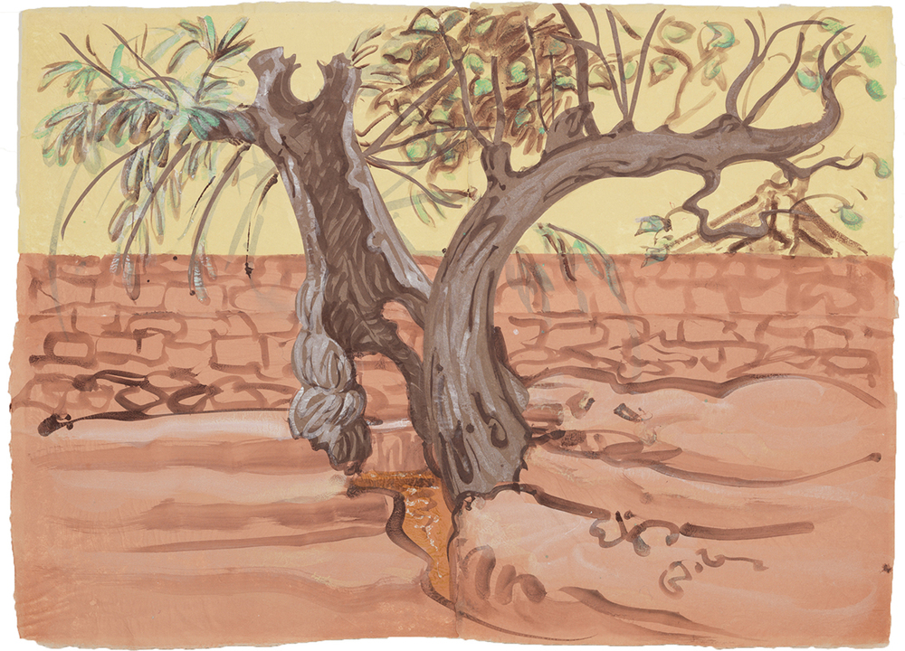 Village Trees straddling a water channel, 2012