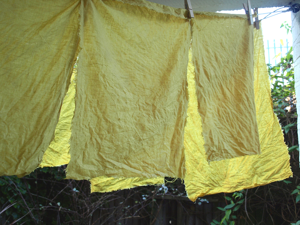 Dyeing linen with huang bai (amur cork tree bark), a Chinese medicine.
