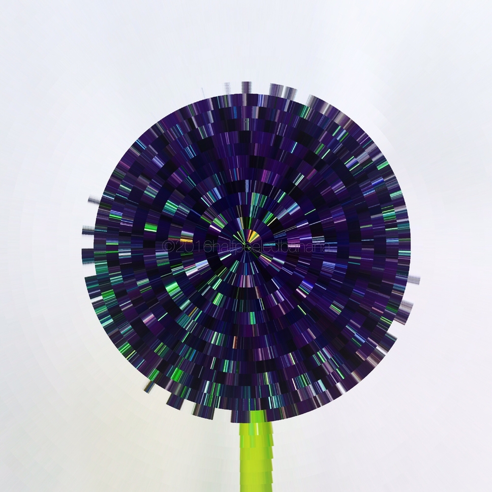 spinner purple flower print